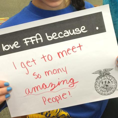 FFA Love Amazing People