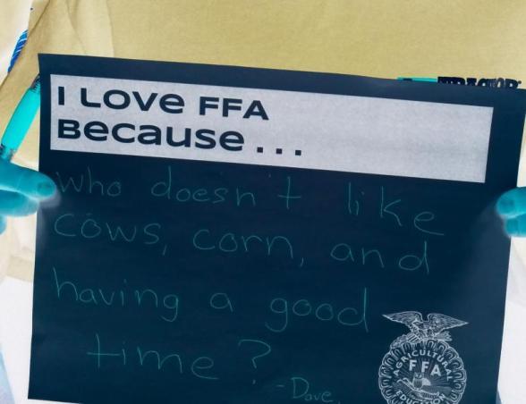 FFA Love Cows Corn Good TIme M