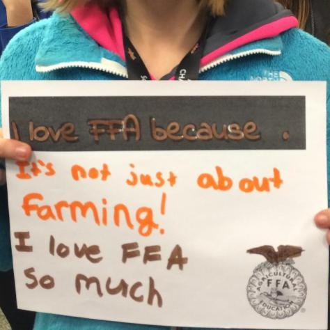 FFA Love Love M